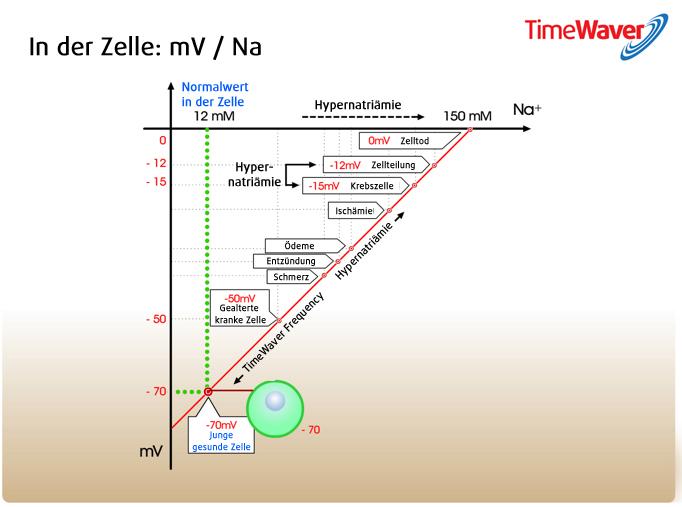 Hier sehen Sie eine Ansicht über die Spannungswerte einer Zellmembran bei der Behandlung mit TimeWavers